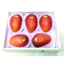 沖縄県産アップルマンゴー2kg